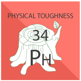 Physical Toughness