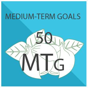 Meso Goals