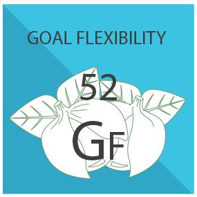 Goal Flexibility